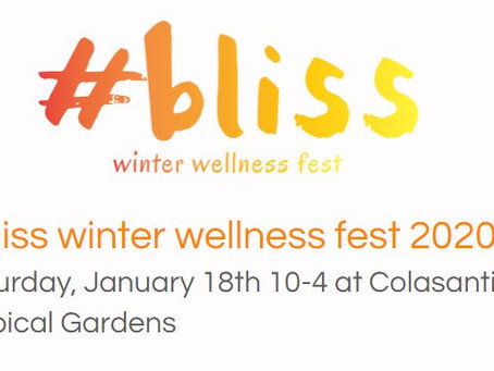 2020 #bliss Winter Wellness Fest