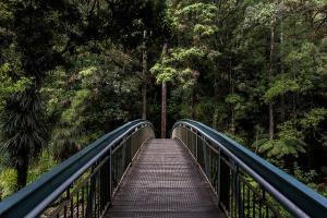 Chiropractic – Bridging the Gap Between Sickness and Health