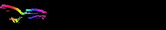 Logo Black Roadrunner transparent.PNG