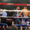 Referee Stops the Fight