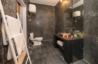 toilet 1b - Copy.jpg