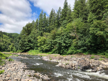 tillamook-forest-dispersed-camping-on-th