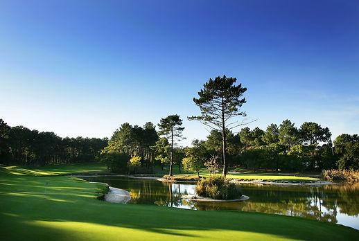 golf n°17.jpg