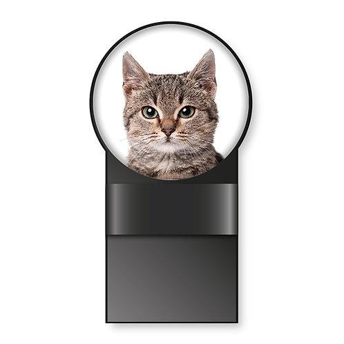 Specmate Cat