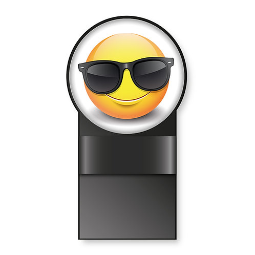 Specmate Smiley Sunglasses
