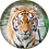 Thumbnail: Specmate Tiger