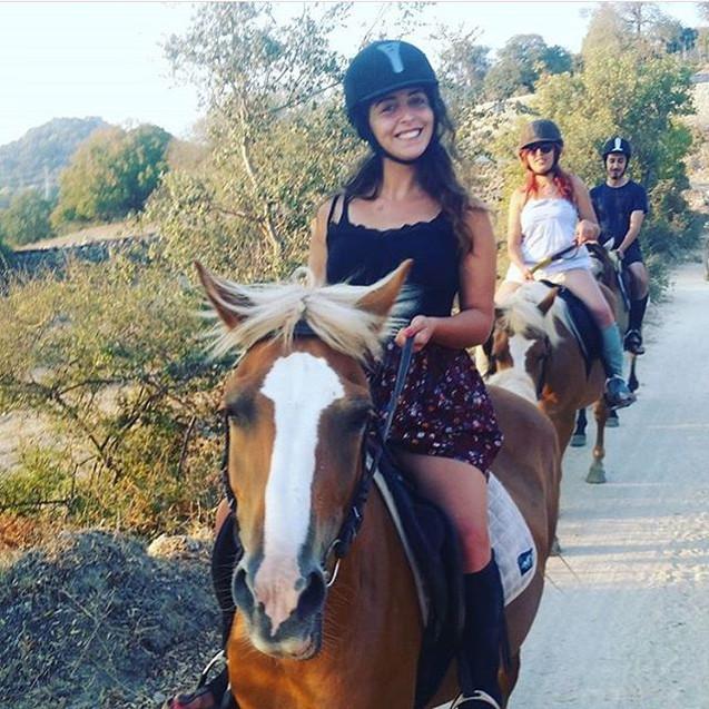 At safari turları İçin iletişime geçebil