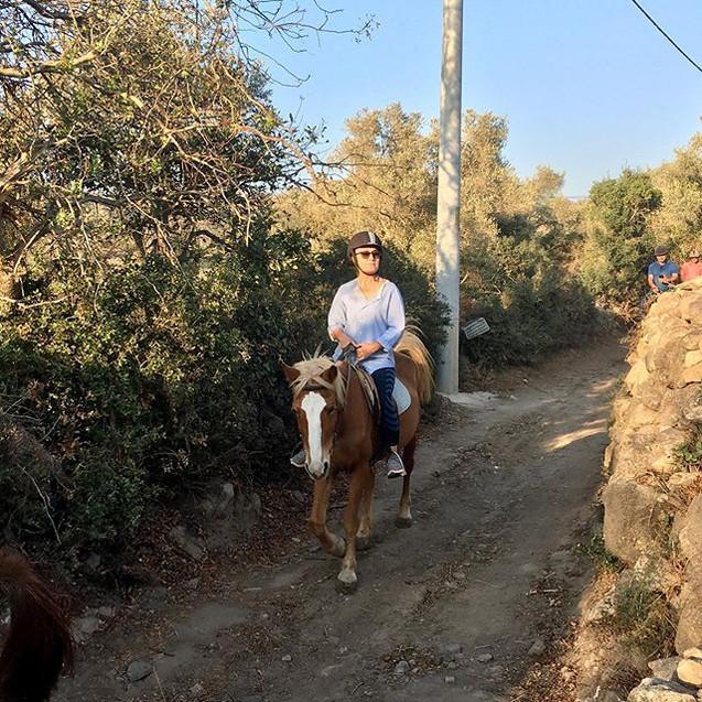 #horsesafari #atsafari #bodrum #turgutre