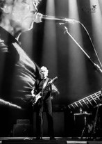 Roger Waters May 2018
