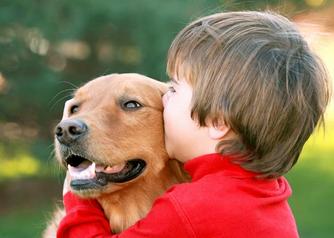 El uso de animales en la terapia psicológica, una práctica en auge.