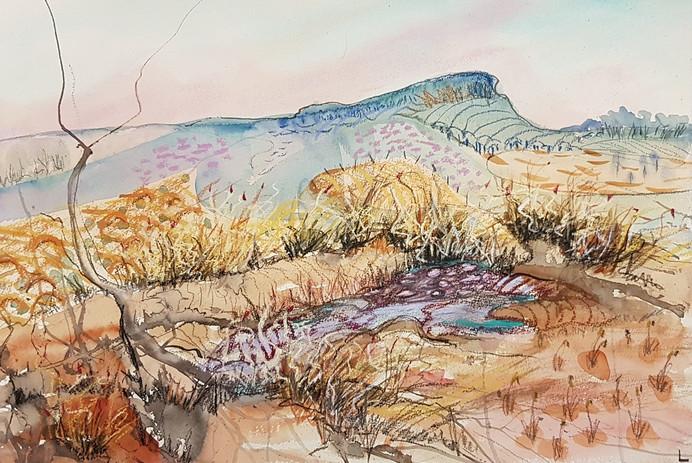 lakeland_Ninderry and Dry Creek
