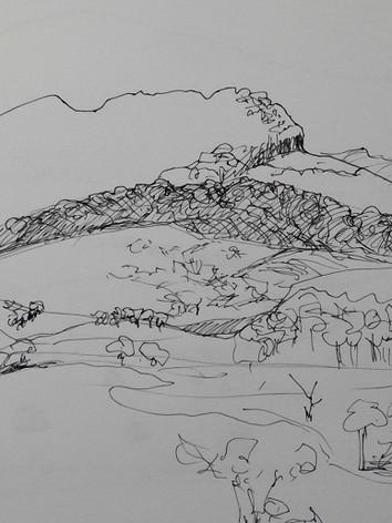 Midlands drawing #1.jpg