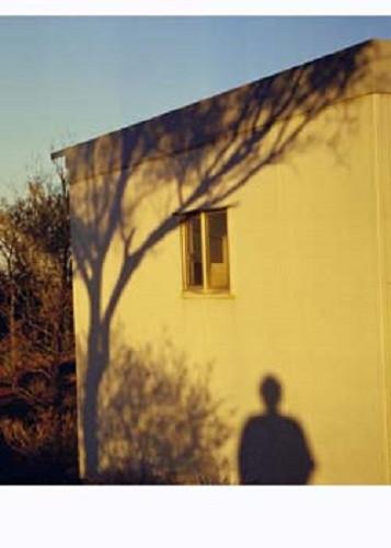 Shadows-Lakeland