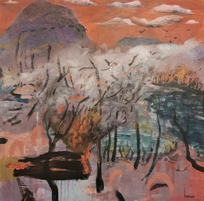 lakeland-Peregian Wetlands September Fires