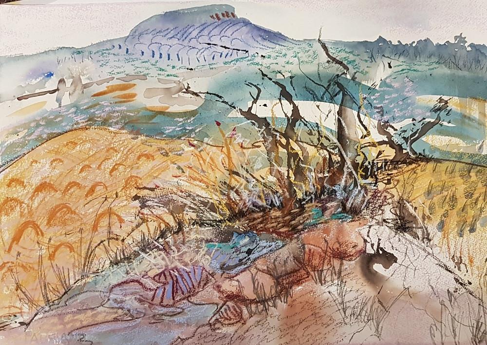 lakeland-Ninderry Creekbed #2
