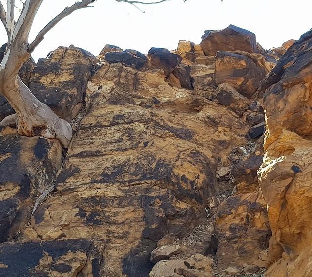 Desert landscape-Lakeland.jpg