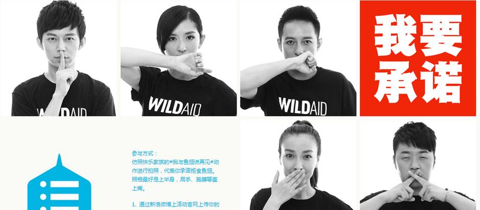 Social Campaigns Via Chinese Social Media