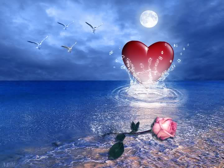 Red Heart and Pink Rose in Ocean.jpg