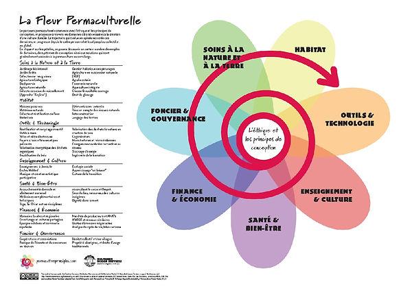 La fleur permaculturelle.jpg