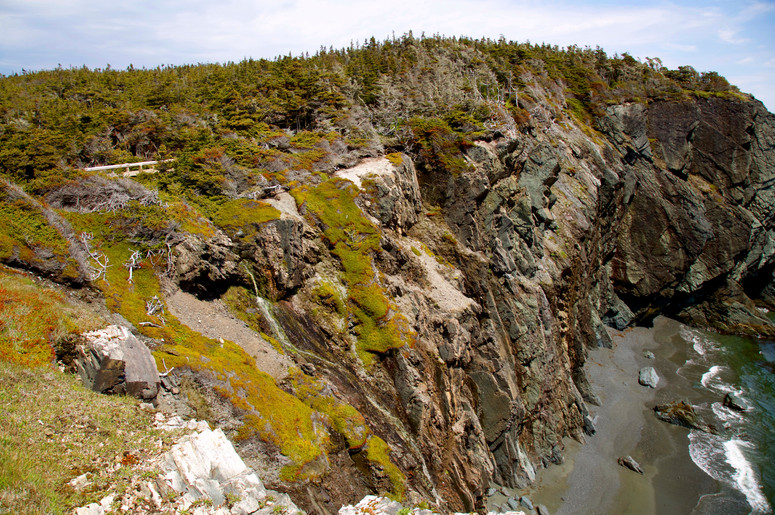 Capelin Beaches