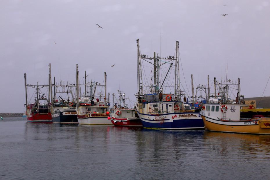 Bay de Verde Wharf