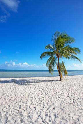 Breezes Of Key West Too