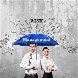 Financial Performance & Risk Management