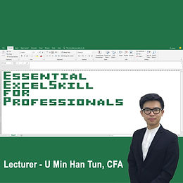 Essential Excel Skills for Professionals