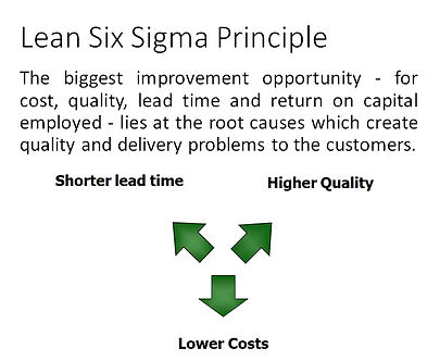 LSS Principles.jpg