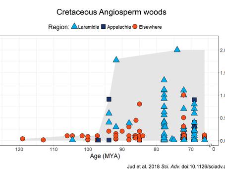 Cretaceous angiosperm trees