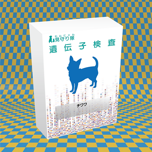 犬・遺伝子検査(チワワ)