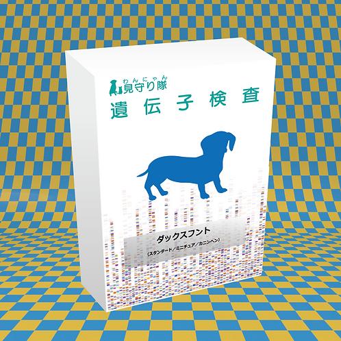 犬・遺伝子検査(ダックスフント)