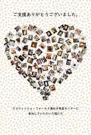 messagecard.png