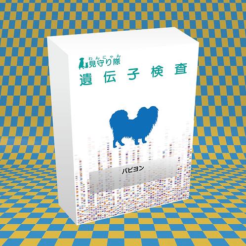 犬・遺伝子検査(パピオン)