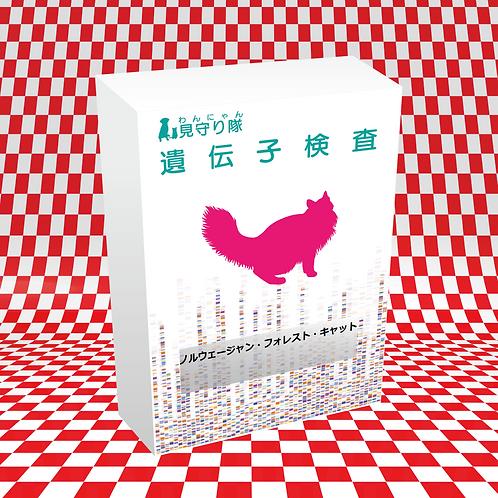 猫・遺伝子検査(ノルウェイジャン・フォレスト・キャット)