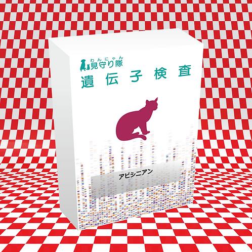 猫・遺伝子検査(アビシニアン)