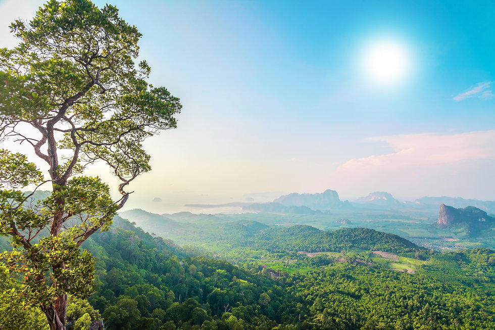 green-mountains-in-thailand-PSGV5PS.jpg