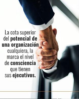 Si los ejecutivos de una organización op