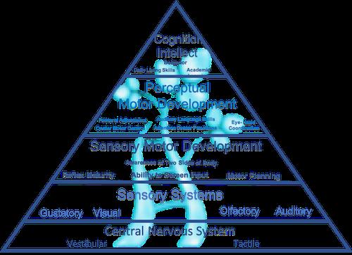 Developmental Pyramid