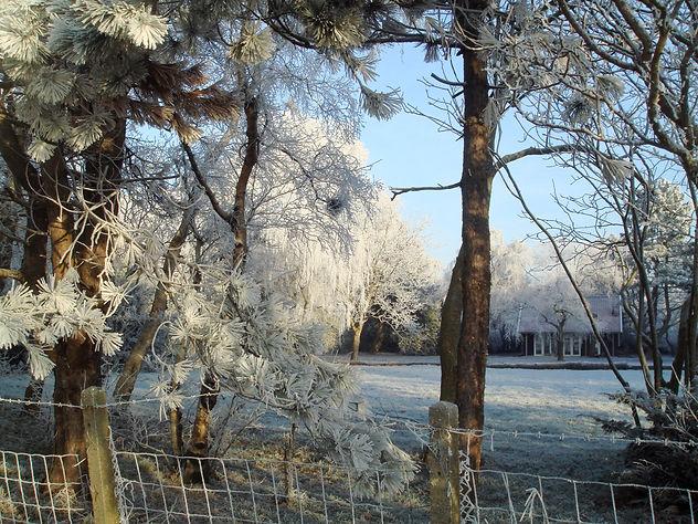 Holiday Cottage Jan Toorop in wintertime