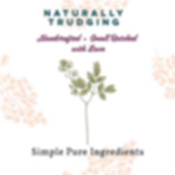 simple pure ingredients2.jpg