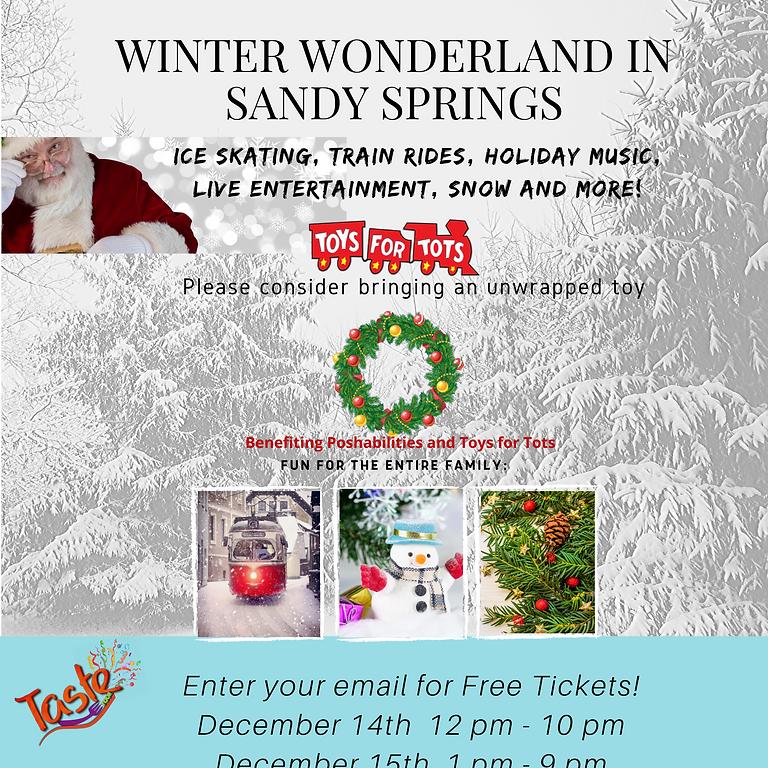 Sandy Springs Winter Wonderland