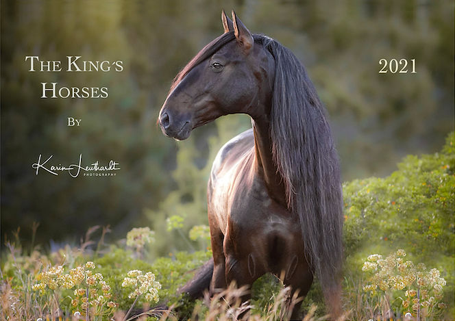 Kings Horses.jpg