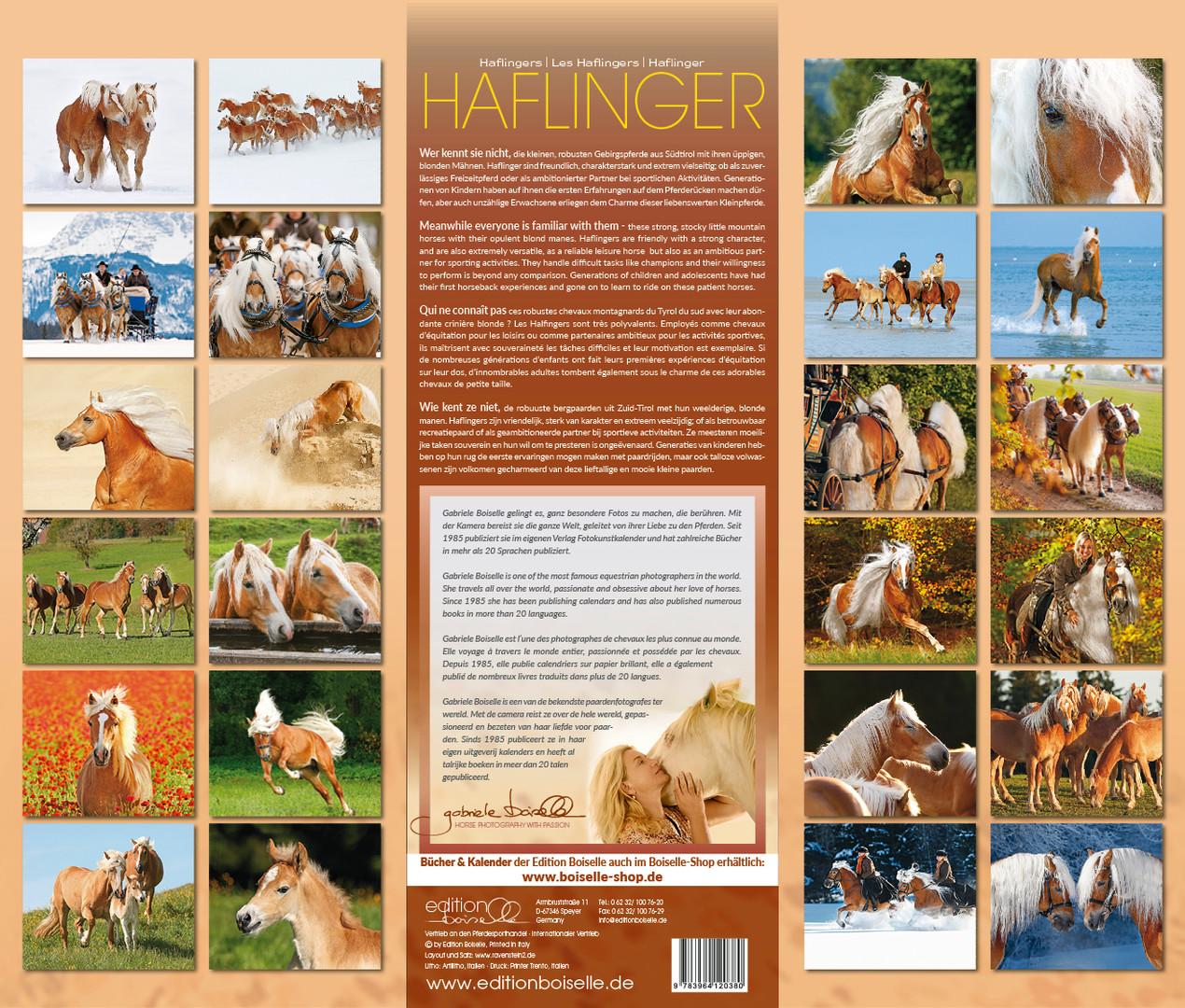 HAFLINGER-2021_28.jpg