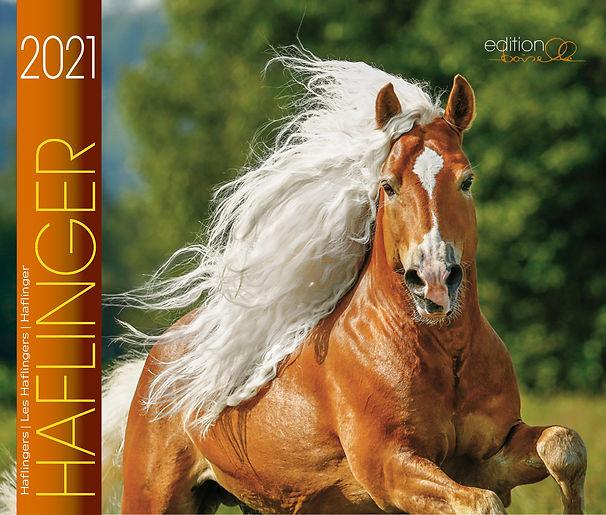 HAFLINGER-2021_1.jpg