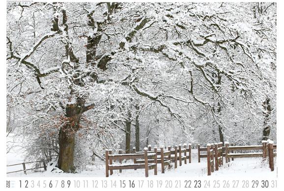 Landschaft_2022-1.jpg