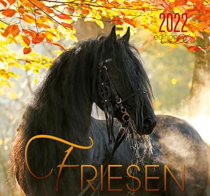 Friesen 2022