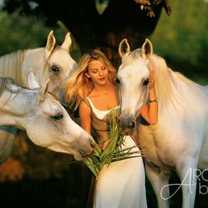 Wie Du Pferde & Menschen fotografierst