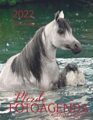 Pferde Fotoagenda 2022