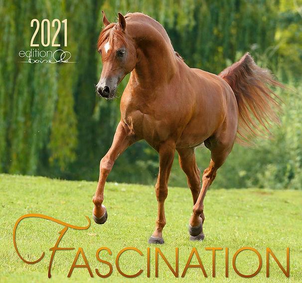 FASCINATION-2021_1.jpg